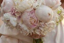 Flowers / by Chrissy Gonzalez