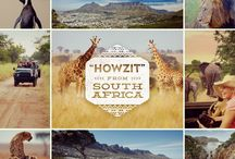 Adventures in Africa / From The Pyramids of Giza to a South Africa Safari, adventure with us through Africa!