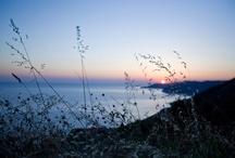 Parco Nazionale del Cilento e del Vallo di Diano / Il Parco Nazionale del Cilento e del Vallo di Diano, il sito archeologico di Paestum e di Velia e la Certosa di Padula sono simboli della nostra cultura e sono agevolmente raggiungibili dal nostro Hotel.