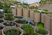 Urban Gardens / by Designed On Sunshine