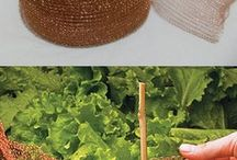 Permakulture / Permakulturní zahrady