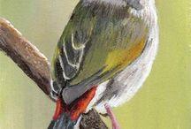 paintings birds