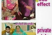 Govt job vs private job