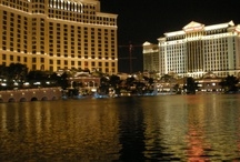 Bellagio Casino and Hotel - Las Vegas