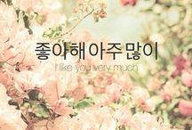 Korean world