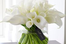 flowers beautifull