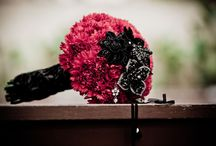 Carnations! / Everything Carnations.