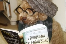 Four-legged Fiction Fans (and Non-fiction, too!) / Whatcha readin'?