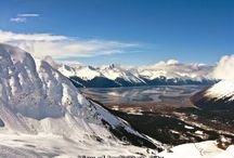 Interesting facts / There are so many Interesting facts about cities of Alaska .