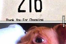 Funny!! :D / Random funny crap that makes me laugh.