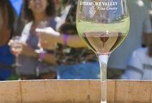 Harvest Wine Celebration