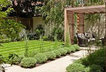 Garden design options
