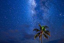 Hawaiian Dreams / by Sarah Sutter