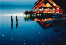 Maldives wedding