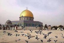Palestine gazze kudüs