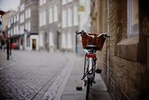 Bikes / by Little Devil