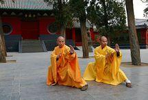 """Diário do Kung Fu // Kung Fu Diaries / Painel do Blog """"Diário do Kung Fu"""""""