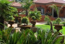 Ivory Manor Gardens / Beautiful lush green gardens at Ivory Manor Boutique Hotel.