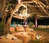 Serenity Garden Ideas