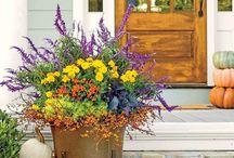 Podzimní verandy