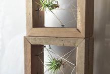 living frame