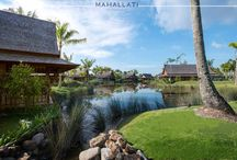 The Sanchaya Bintan Islands / Interior Design and furniture manufacturing done by Mahallati Interior. www.mhllt.com