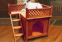 Pets / by Everything Furniture