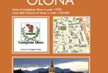 CASTIGLIONE OLONA / La mappa e le informazioni utili sul comune di Castiglione Olona