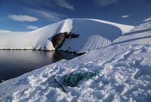 Epic #Antarctica / #Antarctica adventure cruise with @OceanwideExp