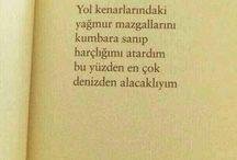 Sunay Akın*