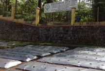 Research / Research station Tawangmangu Indonesia