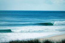 the sea / oceans