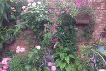 Tuin / Tuinieren tegen muur