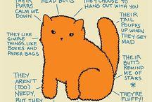 TABBY'S CAT HOUSE
