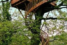 """Tree Houses / Ever since I saw """"Swiss Family Robinson"""" as a child, I have fantasized about living in a tree house."""