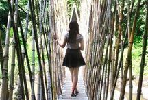 Bamboo Village, Green School, Bali