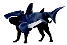 Annies Costumes Tribute to #SharkWeek