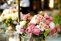 Flowers! / Amazing Flowers