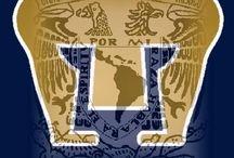 UNAM Orgullo Puma