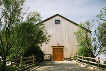 Cobblestone Farm Weddings | Ann Arbor, Michigan