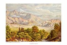 Barraud, Charles / Charles D. Barraud's illustrations are regarded as some of the most important early images of New Zealand landscapes. He was an English artist who emigrated to New Zealand in 1849 and traveled widely in NZ sketching the beautiful scenery, usually in water color.