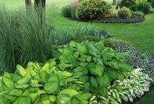 Favourite garden