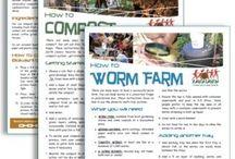 Gardening - compost / worms / bokashi