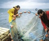 PROGRAM 2 - Ocean-Farming
