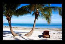 Florida Vacations