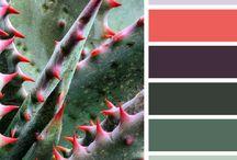 Color impressions
