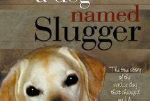 Doggie Books