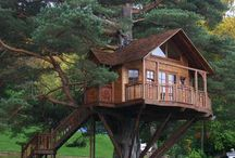Tree Houses  / by Margarida Oleiro