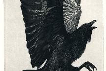 Raven plus... / by Whinnie Calhoun