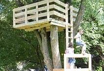 Treehuts